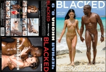 dvd-chernaya-ikona-8-9-interracial-icon-8-9-blacked-greg-lansky